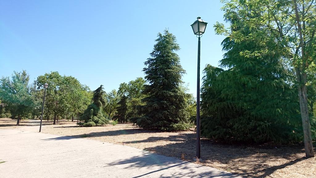 sustitucion-alumbrado-parque